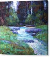 Spring Stream Canvas Print