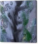Spring Stretch Canvas Print
