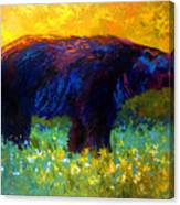 Spring Stroll - Black Bear Canvas Print