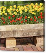 Spring Surrounds The Bench Canvas Print