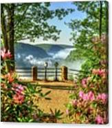 Spring Time At Colton Point State Park Canvas Print