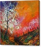 Spring Today Canvas Print
