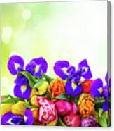 Spring Tulips And Irises Canvas Print