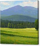Spring Vista Canvas Print