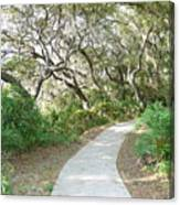Spring Walkway Canvas Print