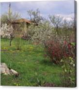 Spring Yard Canvas Print