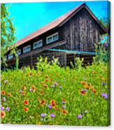 Spring's Blessings Canvas Print