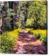 Springtime In Astroni National Park In Italy Canvas Print