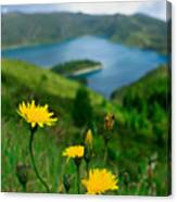 Springtime In Fogo Crater Canvas Print