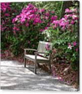 Springtime In The Park Canvas Print