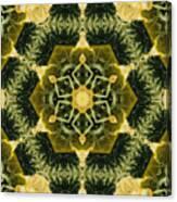 Springtime  Mandala Canvas Print