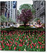 Springtime On Park Avenue Canvas Print