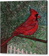 Springtime Red Cardinal Canvas Print