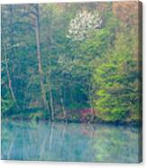 Springtime Reflection Canvas Print