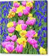 Springtime Tulips 01 Painterly Effecy Canvas Print