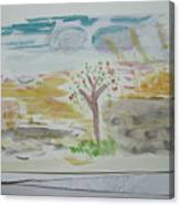 Spring.tree.sun. Water Color 1993 Canvas Print