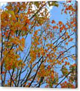 Sprinkles Of Autumn Canvas Print