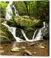 Spruce Flats Falls 2 B Canvas Print