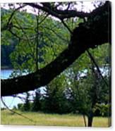 Spruce Knob Silhouette Canvas Print