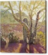Spur Cross, April Canvas Print