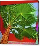 Square Palm Canvas Print