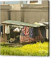 Squatters Homes Canvas Print