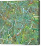 Squiggles  Canvas Print