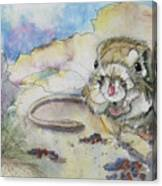 Squiggy Canvas Print