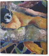Squirrel Monkey Revised Canvas Print
