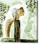 Squirrel Painting Canvas Print