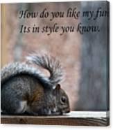 Squirrel With Fur Collar Canvas Print
