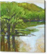 St. Croix, Spring Flood Canvas Print