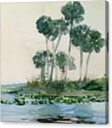 St John's River Florida Canvas Print