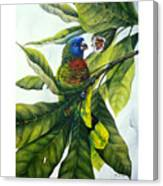 St. Lucia Parrot And Fruit Canvas Print