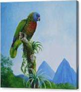 St. Lucia Parrot And Pitons Canvas Print