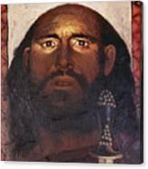 St. Paul - Lgpau Canvas Print