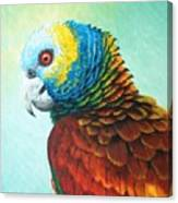 St. Vincent Parrot Canvas Print