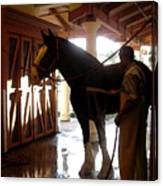 Stable Groom - 1 Canvas Print
