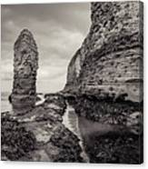 Stack And Chalk Cliff Canvas Print
