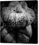 Stacked Pumpkins Canvas Print