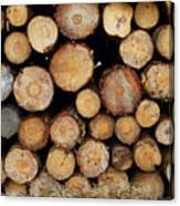Stacked Timber Two Canvas Print
