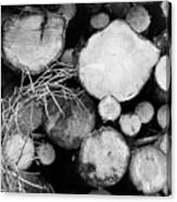 Stacked Wood Logs In Black And White Canvas Print