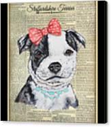 Staffordshire Terrier-jp3857 Canvas Print