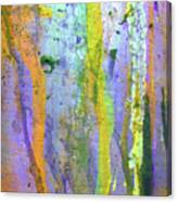 Stains Of Paint Canvas Print