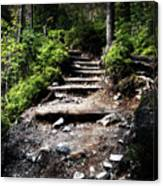 Stair Stone Walkway In The Forest Canvas Print