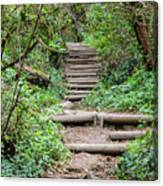 Stairs Going Up Hillside Canvas Print