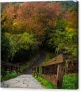 Stairs To The Graveyard Canvas Print