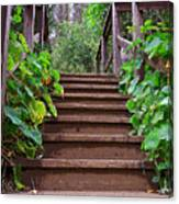 Stairway To Beauty Canvas Print