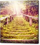 Stairway To The Garden Canvas Print