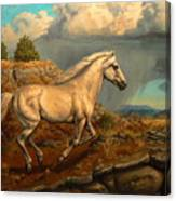 Stallion's Overlook Canvas Print